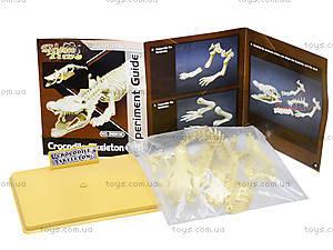 Конструктор «Скелет крокодила», 28202-EC, отзывы