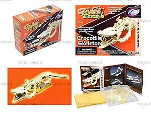 Конструктор «Скелет крокодила», 28202-EC
