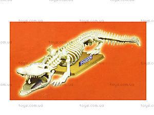 Конструктор «Скелет крокодила», 28202-EC, цена