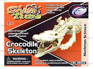 Конструктор «Скелет крокодила», 28202-EC, игрушки