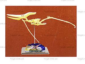 Конструктор «Скелет птеранодона», 28210-EC, фото