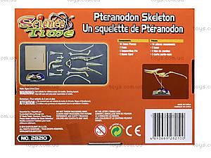 Конструктор «Скелет птеранодона», 28210-EC, отзывы