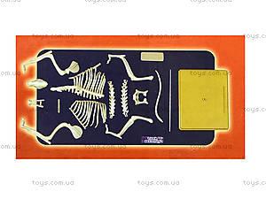 Конструктор «Скелет тигра», 28203-EC, цена