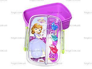 Пластиковый контейнер для еды «Принцесса», 704136, отзывы