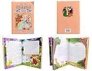 Книжное королевство «Любимые сказки», Талант, фото