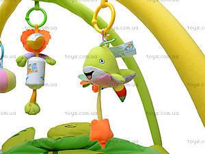 Коврик для малышей, 898-12B, цена