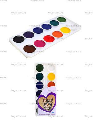Краски акварельные Rachael Hale, 12 цветов, R13-061K