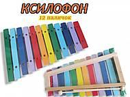 Ксилофон «12 палочек», RTMKS-12T, фото
