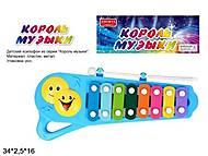 Ксилофон ''Король музыки'' 2 цвета, ZYK-058A-1, отзывы