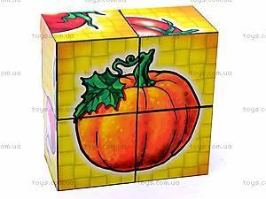 Кубики «Овощи», 1349