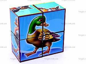Кубики «Птицы», 1875, игрушки
