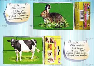 Кубики для детей «Мир животных», выпуск 2, 106022