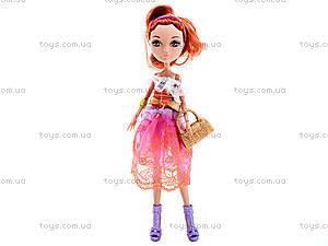 Детская кукла типа Ever After High с аксессуарами, D221B, фото