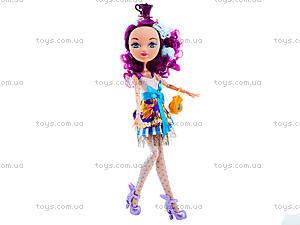 Детская кукла типа Ever After High с аксессуарами, D221B, магазин игрушек