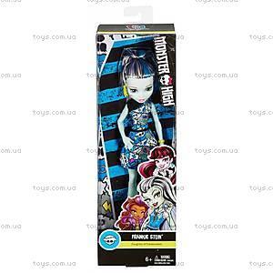 Кукла Monster High «Моя монстро-подружка», обновленная, DTD90, цена