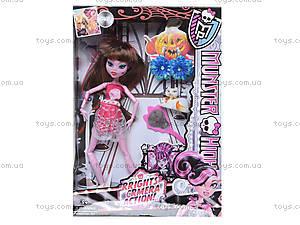 Кукла Monster High с аксессуарами в коробке, RY299C, цена