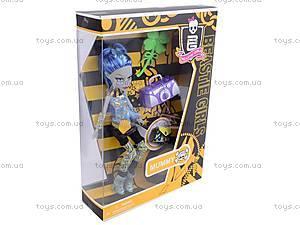 Кукла «Монстер Хай» с аксессуарами, 93051, магазин игрушек