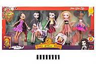 Куклы с аксессуарами типа «Ever After High», 3318