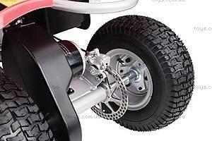 Детский квадроцикл Dirt Quad-Red, R25143060, фото