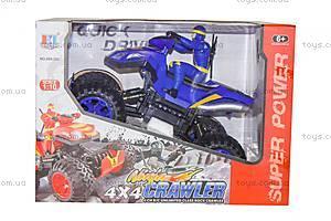Квадроцикл с водителем на РУ, 689-353, купить