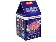 Карманные фокусы «Сумасшедшие конверты» для детей, 15114045Р, фото