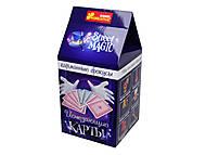 Карманные фокусы «Исчезающие карты» для детей, 15114003Р, фото
