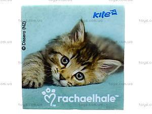 Ластик Rachael Hale, квадратный, R13-101К, купить