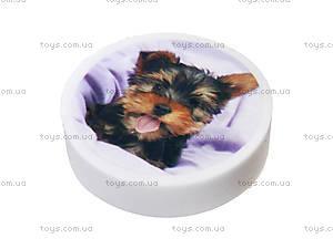 Ластик круглый «Pets», 560242, фото