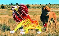 Конструктор деревянный «Лев» цветной, Е013с, детские игрушки