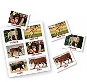 Лото «животные» Вундеркинд, 096143, отзывы