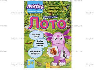 Детское лото с животными «Лунтикова школа», Л524017РУ, цена