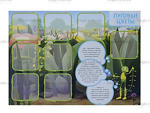 Лото с растениями и плодами «Лунтикова школа», Л524011РУ, цена