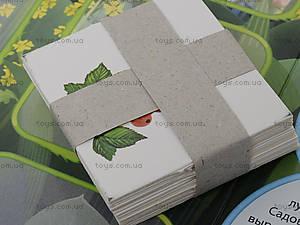 Лото с растениями и плодами «Лунтикова школа», Л524011РУ, детские игрушки