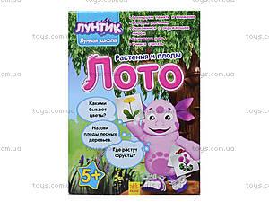 Лото с растениями и плодами «Лунтикова школа», Л524011РУ, toys.com.ua