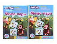 Лунтиковая школа «Мемо-пары», Л524003РУ, фото