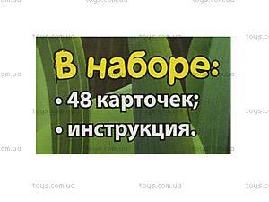 Лунтиковая школа «Половинки», Л524015РУ, отзывы