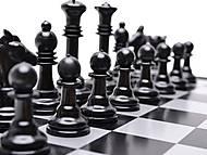Магнитные шахматы, 8188-13, купить