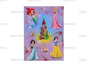 Магниты на трафарете «Диснеевские принцессы», VT5109-02..07, фото
