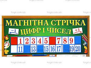 Магнитная лента «Цифры и числа», 156116107069У, купить
