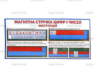 Магнитная лента «Цифры и числа», 156116107069У, іграшки