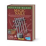 Магическая наука «Магические гвозди», 00-06700, фото