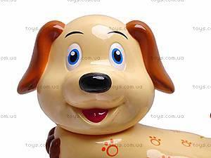Маленькая собака на поводке, 2013-1, цена
