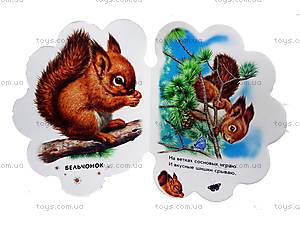 Книга для малышей «В лесу», М411005РА7360Р, фото