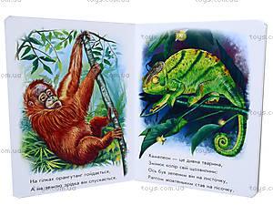 Детская книга «Лесные зверьки», М212006У, фото