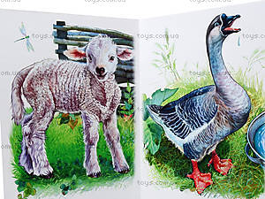 Ребятам о зверятах «Во дворе», М322006У, цена