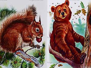 Книга «Ребятам о зверятах: В лесу», М322002Р, цена