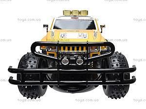 Машина-амфибия на радиоуправлении, 24887, детские игрушки
