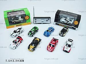 Машина Rally, на радиоуправлении, 2006C