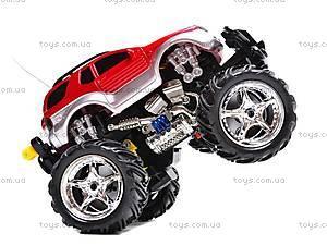 Машина «Танцующий джип», на управлении, 92271-6
