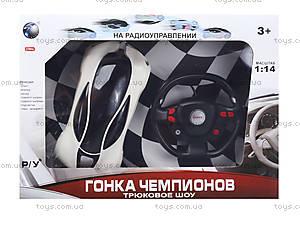 Машина на радиоуправлении, для детей «Гонка чемпионов», 666-TT01, детские игрушки